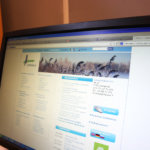Lempäälä uudistaa nettisivunsa