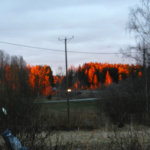 Auringonlasku sai metsän tuleen Näppilässä