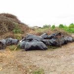 Muovi ei kuulu risujätteisiin