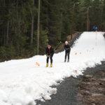 Tammelan Ryskeen kansalliset hiihdettiin Hakkarin ladulla