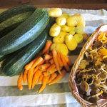 Ihmisten pitää syödä monipuolisesti – Vegaaniruokavalion tiukkapipoinen noudattaminen on huono asenne