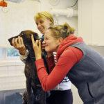 Hoitoa Lempäälän karvakorville