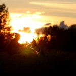 Ystävykset Kuva: Katri Pietilä
