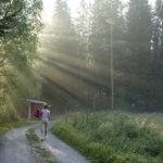 Pirteänä aamu-uinnille Kuva: Mirva Kujala
