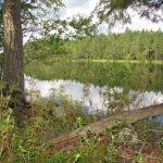 Päiväretki Vesilahden luontoon: Saastonkulma