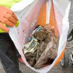 Siivoustalkoita ei tänä vuonna järjestetä kokoontumisrajoitusten vuoksi