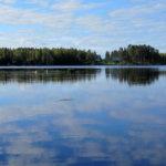 Sinilevää runsaasti Vesilahden Kirkonkylän rannassa