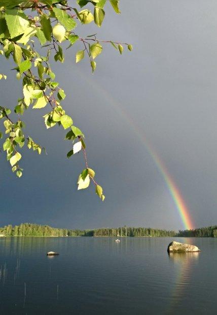 Aarrekivi Kuva: Anne Honkalahti