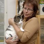 Kodittomat eläimet tarvitsevat apuasi