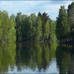 Vihreys Kuva: Kari Saarinen