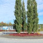 Ideaparkinkadun ja Marjamäenkadun risteys. Kuva: Erkki Koivisto