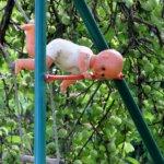 Pieni trapetsitaiteilija, lasten leikeissä. Kuva: Anneli Manninen