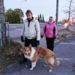 Koiraväki kuntakävelyllä