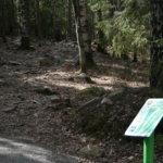 Frisbeegolfradat Hakkarissa, Kuljussa ja Vesilahdessa – mukavaa yhdessäoloa ja kevyttä liikuntaa.Kuva: Veikko Paasi