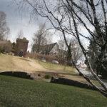 Humalainen kaatoi puita Myllyrannassa