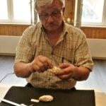 Vesa Paldanius otti mittoja näätien näyttelykalloista. Kuva: Ahti Granat