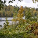 Myllyrantaan kaavaillaan ravintolalaivaa ja Lammasniemeen veneilykeskusta