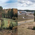 Vuoreksen keskuspuisto kuvattuna 2008 ja 2014. Kuva: Juha Suonpää