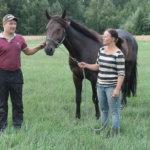 Koivistonjärvellä valmennetaan hevosista huippuravureita
