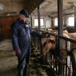Maitoauto ei kulje enää Latomaantiellä