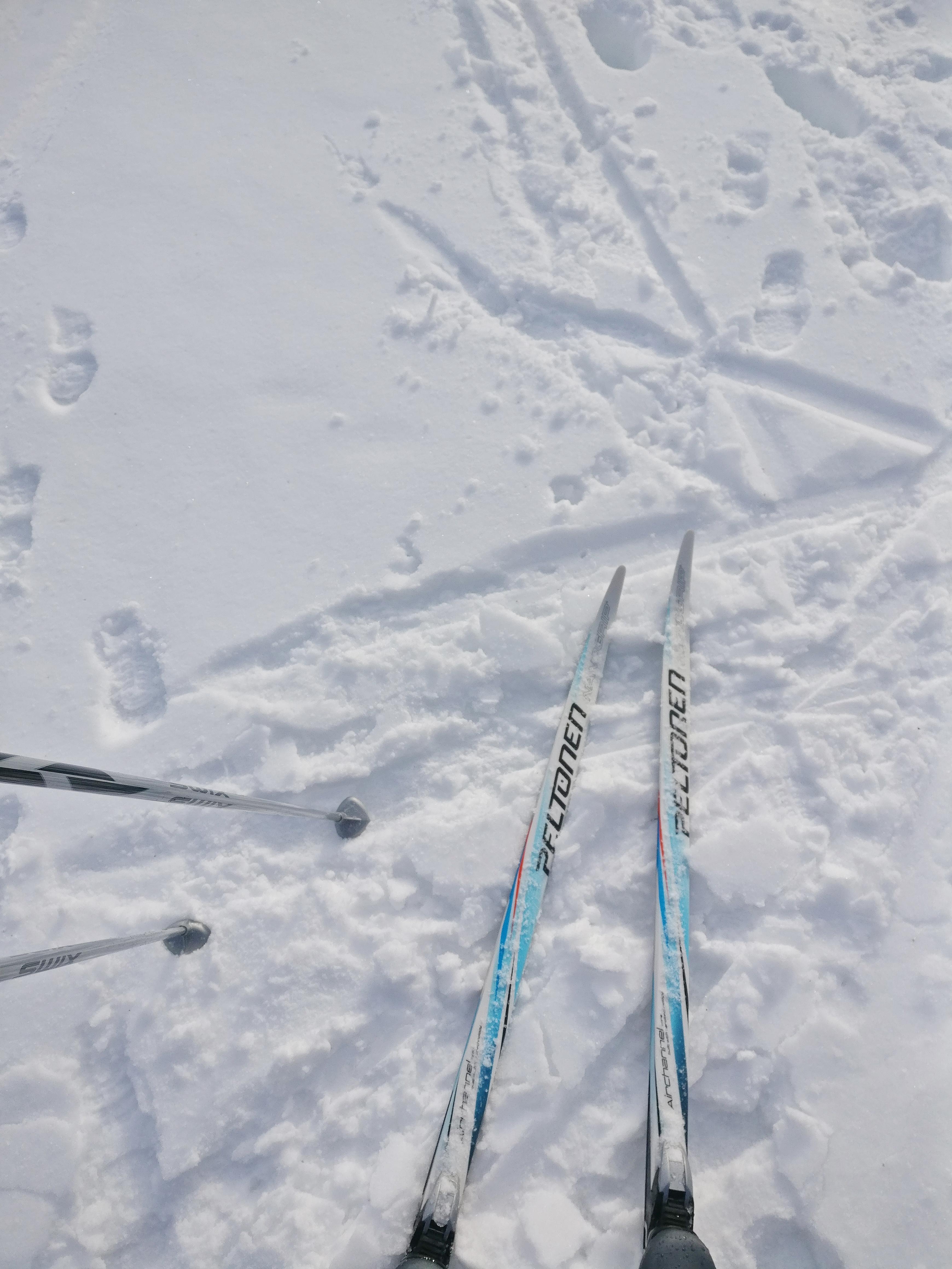 Alakoululaisten hauskat lumipäivät Hakkarissa