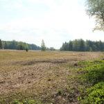 Hennerin tilasta suurkaupalla 35 hehtaaria: Lempäälän kunta ostaa miljoonalla eurolla maata Hauralassa