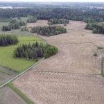 Lempäälän kunta osti ison alueen maata Hauralasta