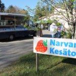 Narvan kesätorilta löytyy paikallisia erikoisuuksia ja perinteisiä toriherkkuja