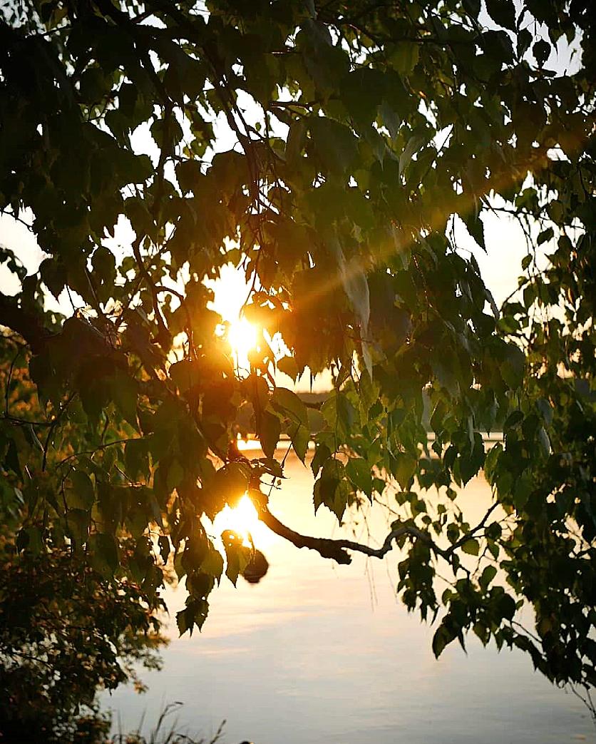 Aurinko kajastaa. Kuva: Mira Nurmi