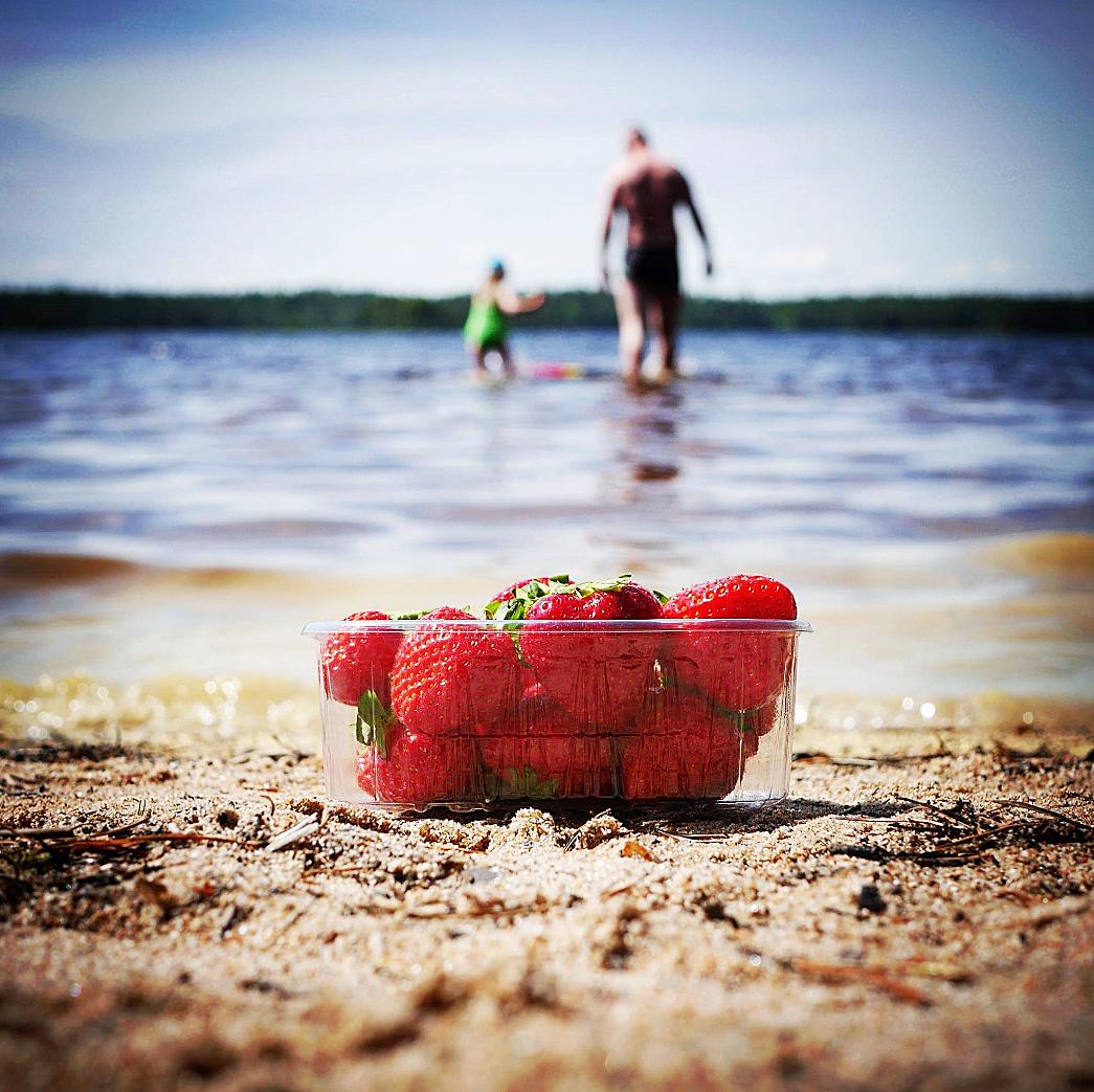 Mansikkaranta. Kuva: Mira Nurmi