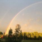 Kesäkuvakisa: Sateenkaari maalaismaisemassa, lokki kärkkyy lounasta