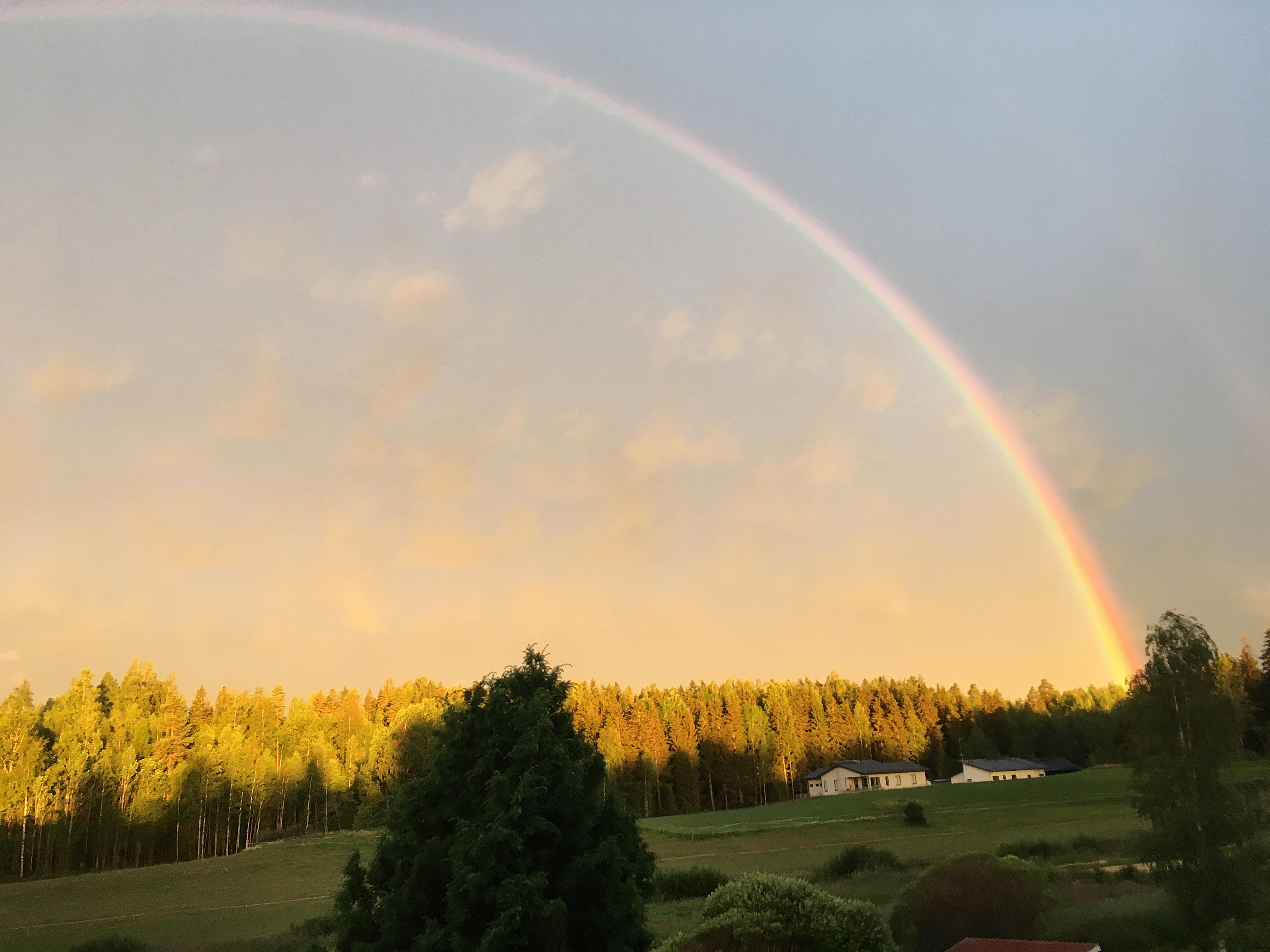 Kokonainen sateenkaari oli mystinen näky terassilta varhain aamulla 28.7, kuin tv-ohjelmassa jokunen vuosi sitten! Kuva: Johanna Raunio