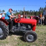 Huimapäät kaasuttivat kopittomilla kokoontumisajoon – Vanhat traktorit vetivät Narvaan kaikenikäistä väkeä. Huutokaupan tähtenä himoittu harmaa Ferguson