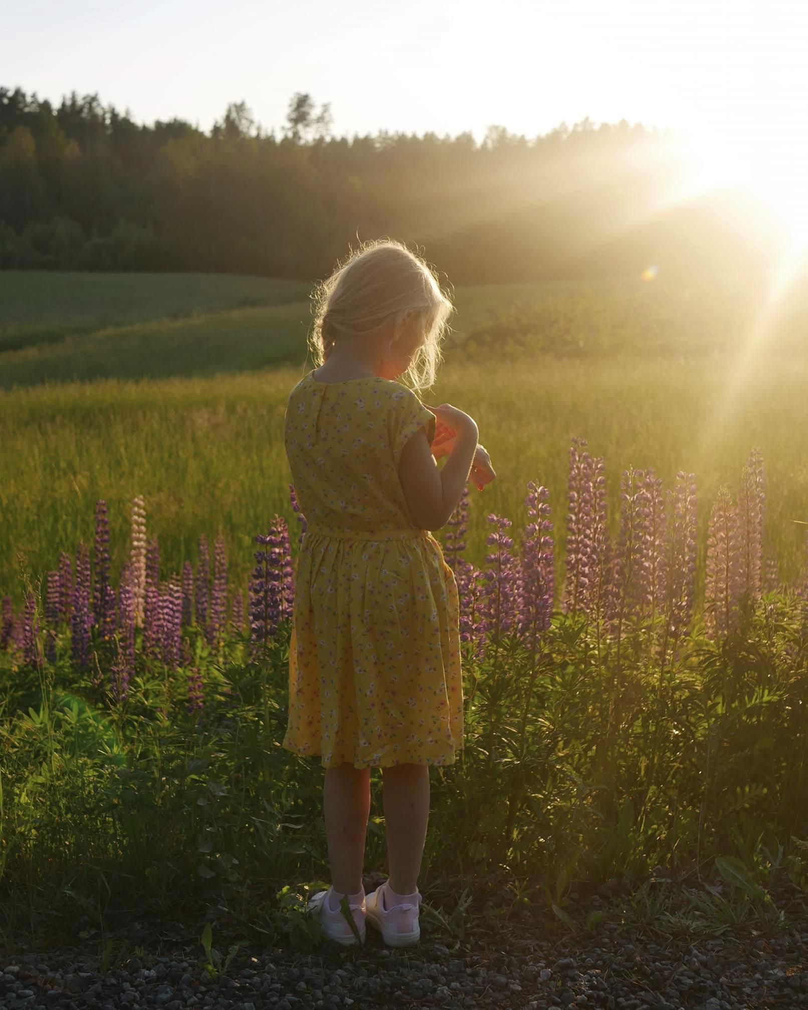 Tyttö ja lupiinit. Kuva: Mira Nurmi