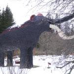 Paikallinen eläin: Omenavarkaan kärsä yltää latvaan saakka – Keksijän pihalla asuva mammutti muistuttaa eläinlajien kadosta