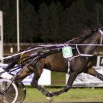 Flunssa on vaivannut hevosia ja kilpailut ovat jääneet vähemmälle  – Kristian Lellan valmennettava lähellä voittoa