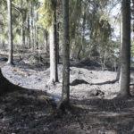 Liuhankaarteen palo kytee edelleen – Palo saatiin sunnuntaina hallintaan, mutta kytöpalo nousi esiin maanantaina