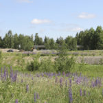 Lempäälään uusia liikuntapaikkoja – Viisivuotissuunnitelmassa huomioidaan kuntalaisten toiveita