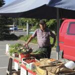 Lempääläläinen torikauppias myy vihanneksia parkkipaikalla