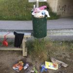 Liian pieni roskis Ryynikän rannassa