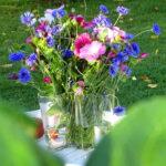Kukkaloistoa maisemapellolta