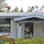 Lukijan kuva: Kiipeä katolle!
