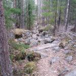 Sääksjärven tärkein palvelu on luontopalvelu – Lehtivuoren alueen silpoutuminen ei ole juuri saanut huomiota